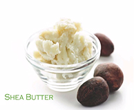 Viniferamine Ingredients - Shea Butter